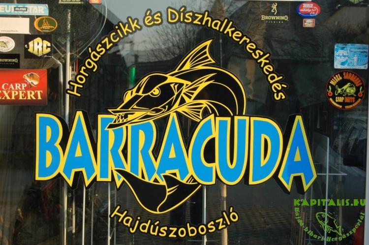 Barracuda bojlikészítés
