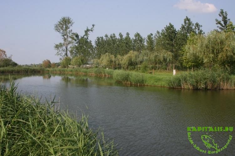 Halkatraz horgásztó