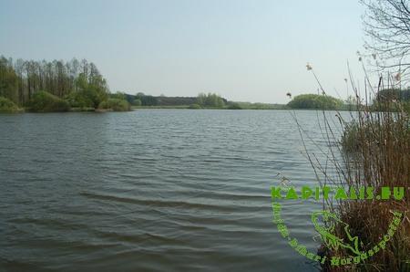 Hármashegyi horgásztó