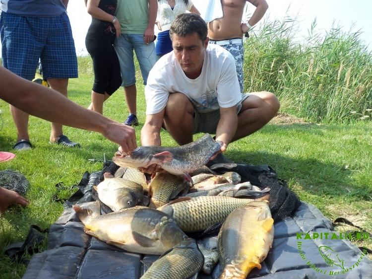 Kincses Horgásztó