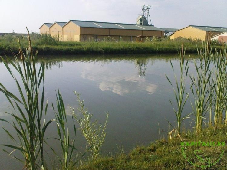 A horgásztó egy mezőgazdasággal foglalkozó telep mellett található.