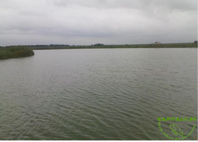 A tó víz mélysége átlag 1,5m de van ahol eléri a 3 métert is. Területe:2,9 hektár.