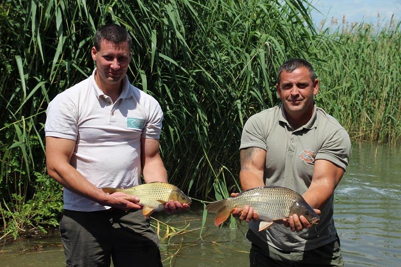 Telepítés a Tisza tóba