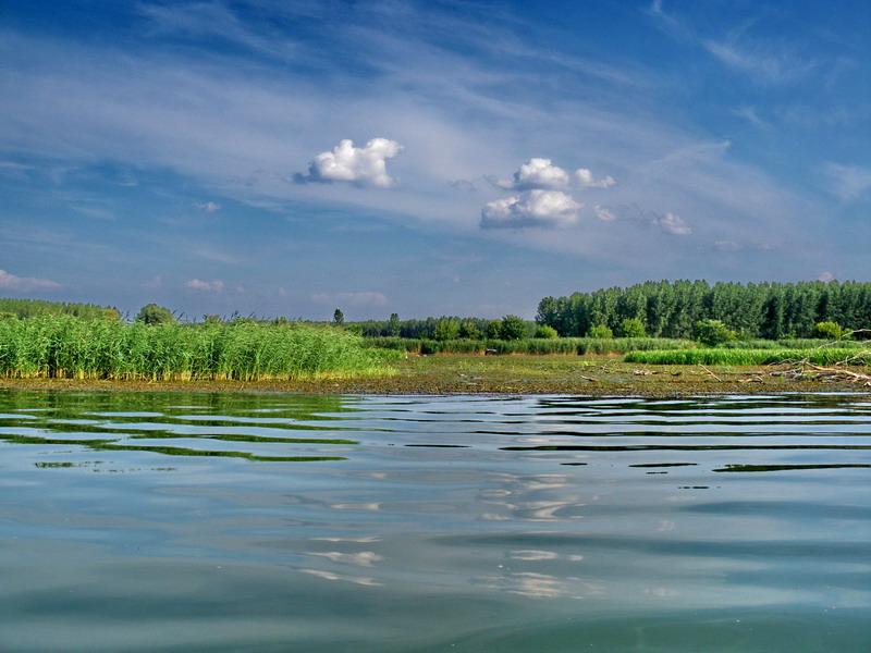 Halgazdálkodási célú fejlesztések a Tisza-tavon