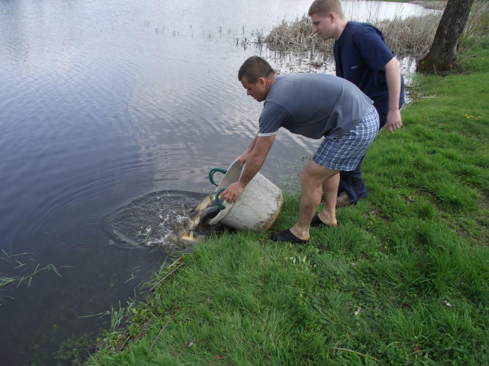 Telepítés a Szentannapusztai víztározón 2013-04-24