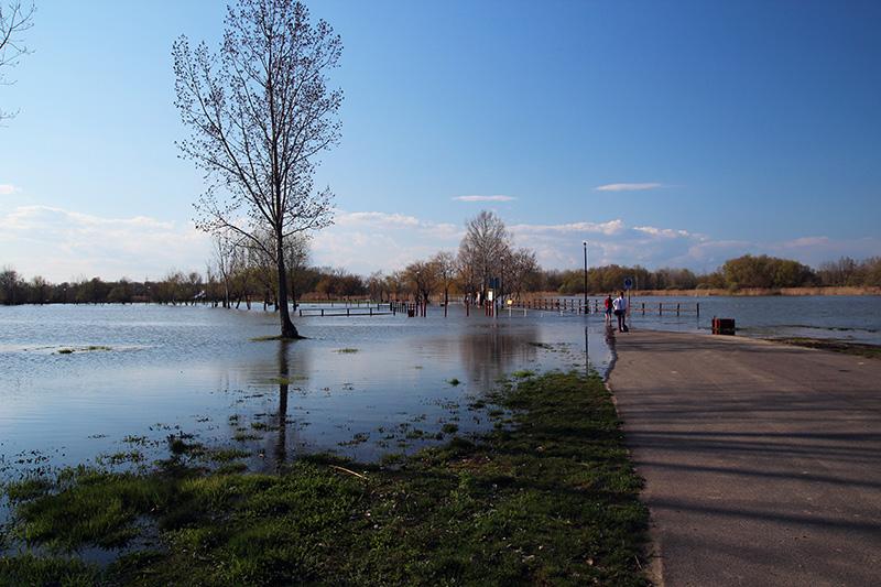 Visszavonásra került a horgászati tilalom a Tisza tavon