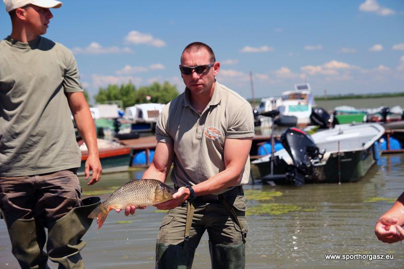 Ponty telepítés a Tisza tó térségében