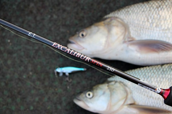 A kis 2,10-es bot sokadjára bizonyított csónakos horgászat során