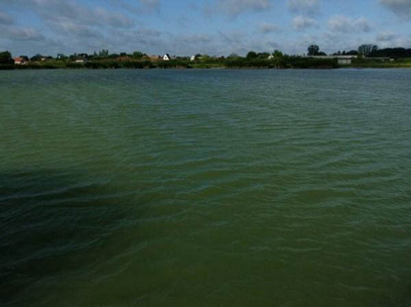 Hajdúszoboszlói Horgász Egyesület - Pontyos tó