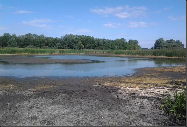 Két év után ismét kiszáradt a Halápi-tó