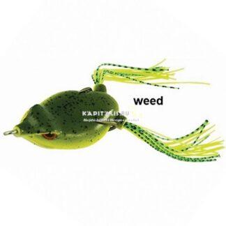 Rapture Dancer Frog gumibéka (Natural Weed)