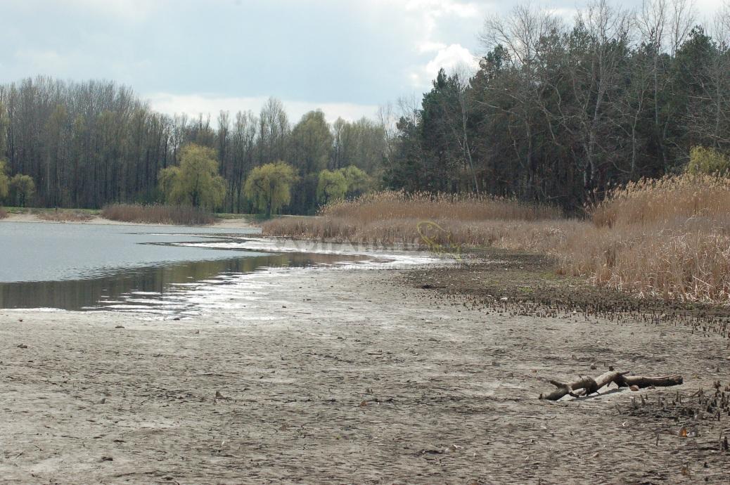 Halmentő-horgászat a Fancsikai tavakon