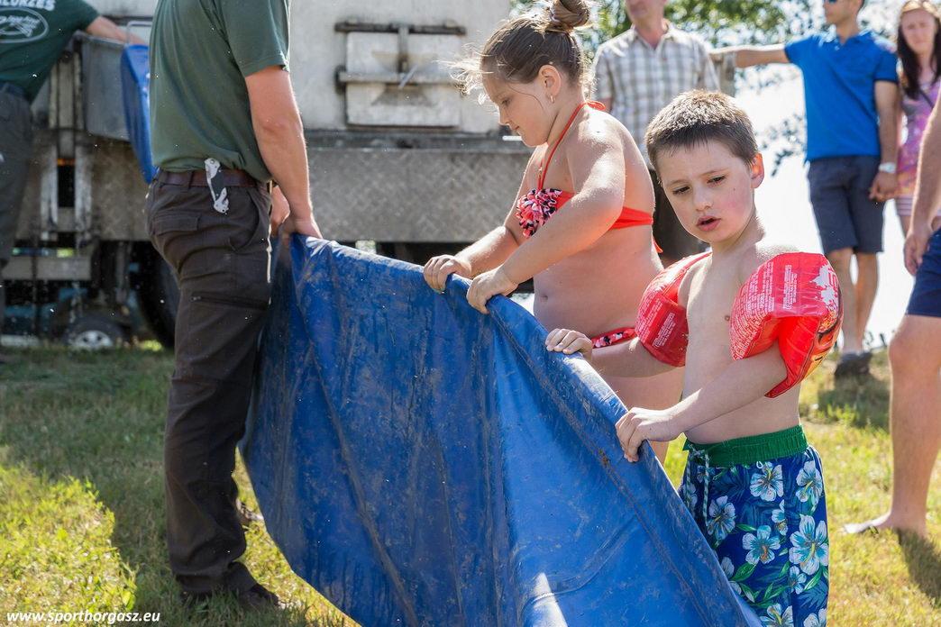 Újabb háromnyaras pontyokkal frissül a Tisza-tó halállománya