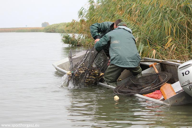 Nem tudja, hogyan horgászhat az idén? – Ezt kell elolvasnia