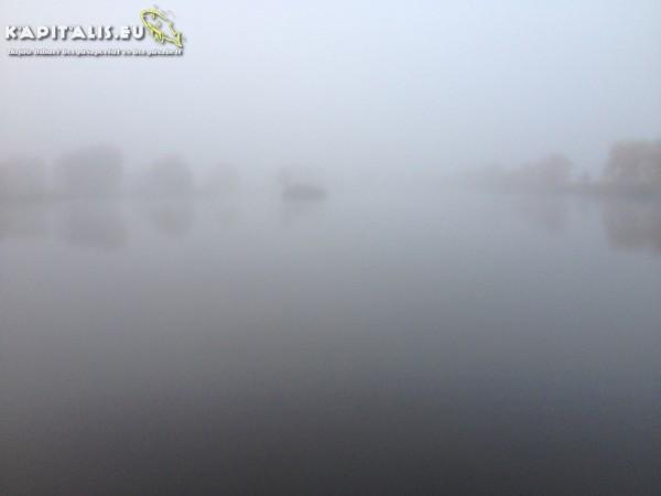 Ismét ködös a reggel - nem szeretem