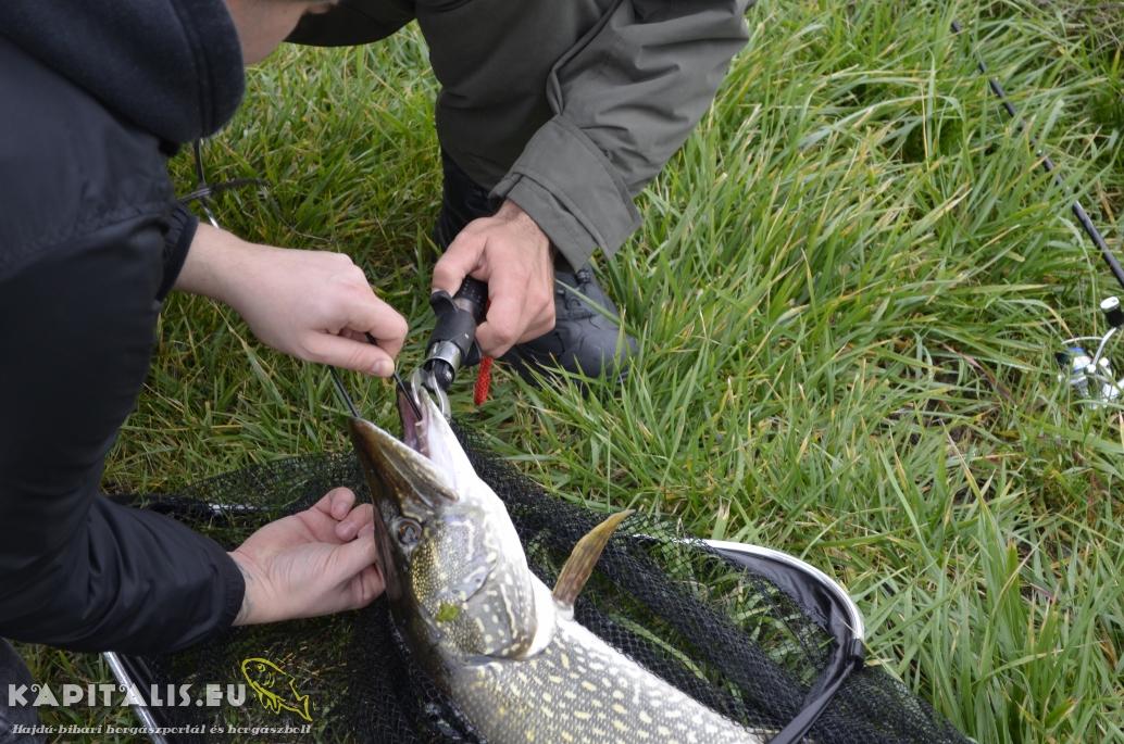 II. Nyugati egyéni pergető horgászverseny (beszámoló)