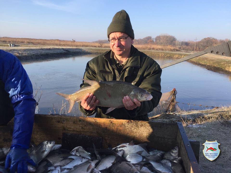 Karácsony előtti ajándék a horgászoknak